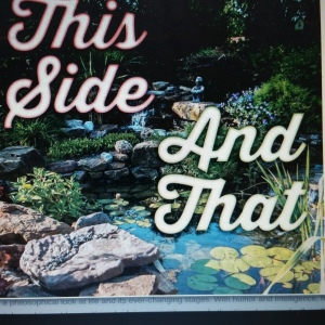 Click to order TD Richards' book This Side and That from Amazon